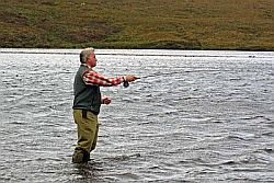 Wild brown trout fishing near Badachro